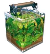 Wave Box Cube