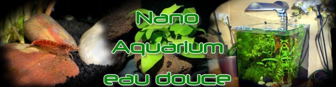 NanoDouce.com